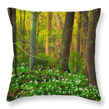 Gypsy Glen Park Throw Pillow
