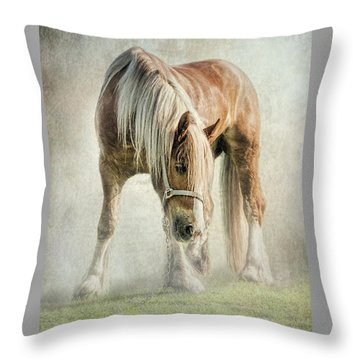 Gypsy In Morning Mist. Throw Pillow by Brian Tarr