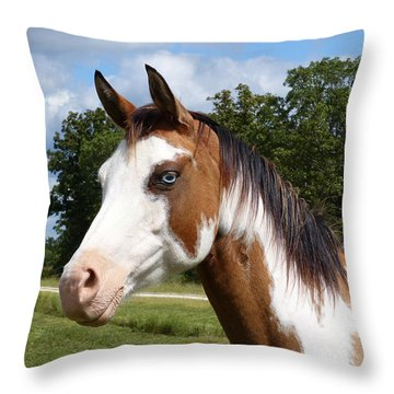 Gypsy Paint Throw Pillow