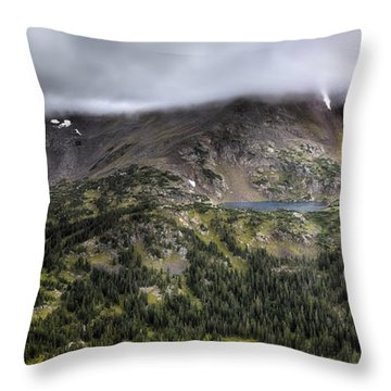 Habitable  Throw Pillow