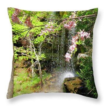 Haily Falls Throw Pillow by Marty Koch