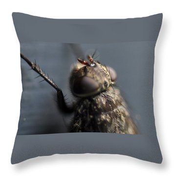 Throw Pillow featuring the photograph Hair On A Fly by Glenn Gordon