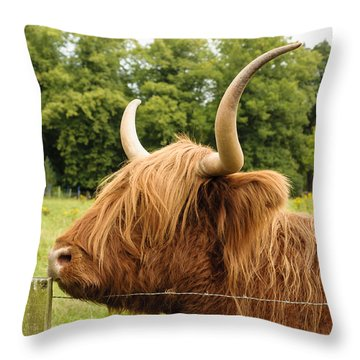 Throw Pillow featuring the photograph Hairy by Christi Kraft