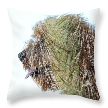 Hairy Doodle Throw Pillow