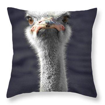 Hairy Fuzzball Throw Pillow