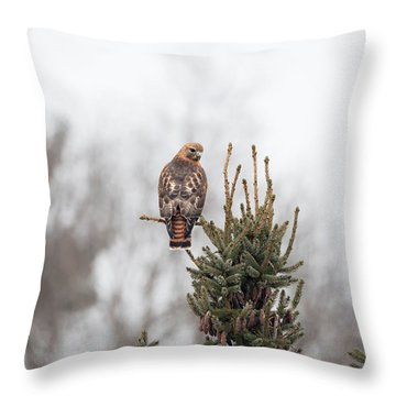 Hal Hanging Out 2 Throw Pillow