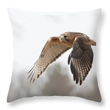 Hal Takes Flight Throw Pillow