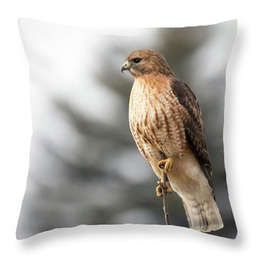 Hal The Hybrid Portrait 1 Throw Pillow