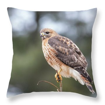 Hal The Hybrid Portrait 3 Throw Pillow