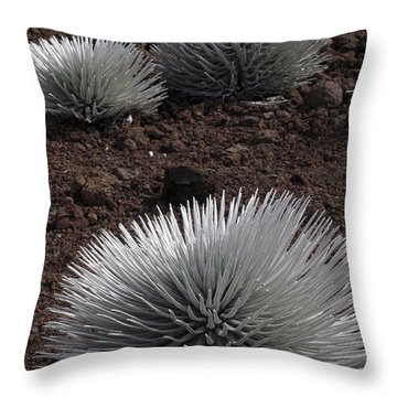 Haleakala Silverswords Throw Pillow