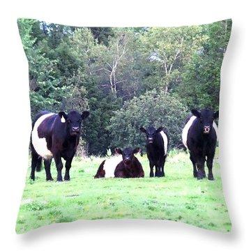 Half A Dozen Oreos Throw Pillow