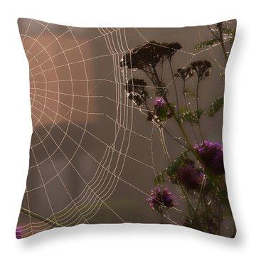 Half A Web Throw Pillow