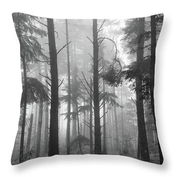 Throw Pillow featuring the photograph Half Century by Mary Amerman