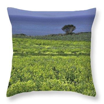 Half Moon Bay Throw Pillow