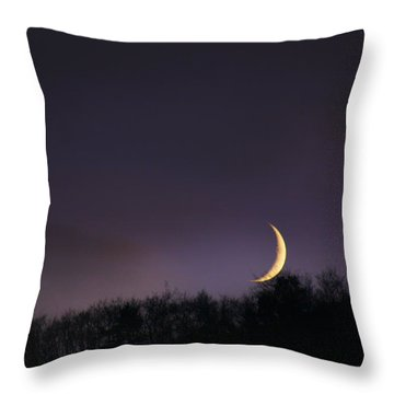 Half Moon Throw Pillow by Martina  Rathgens