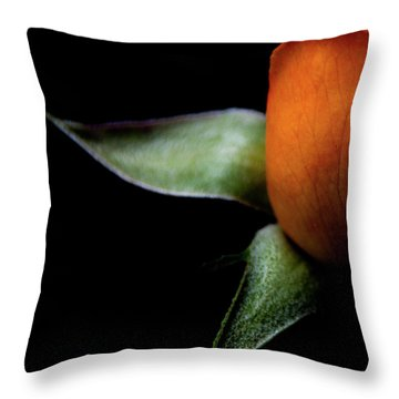 Throw Pillow featuring the photograph Half Of A Rose by Julie Palencia