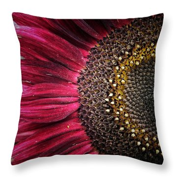 Half Red Throw Pillow by Karen Stahlros