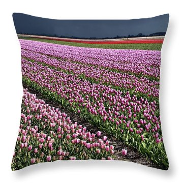 Half Side Purple Tulip Field Throw Pillow by Mihaela Pater