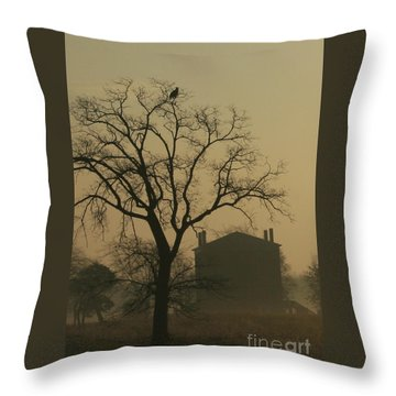 Halfway House And Eagle Throw Pillow