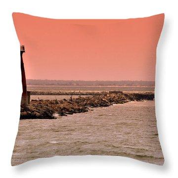 Halladay Throw Pillow by Trish Tritz