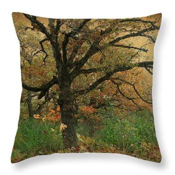 Halloween Tree 2 Throw Pillow by Scott Kingery