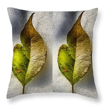 Halves Throw Pillow by Tom Druin