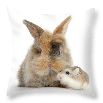 Ham And Bun Throw Pillow
