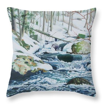 Hamburg Mountain Stream Throw Pillow