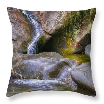 Hamilton Falls Throw Pillow