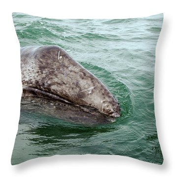 Hand Across The Waters Throw Pillow