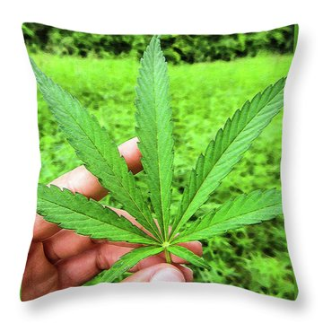 Hand Holding A Hemp Leaf Throw Pillow