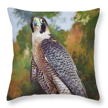 Throw Pillow featuring the photograph Hand Of The Falconer by Nikolyn McDonald