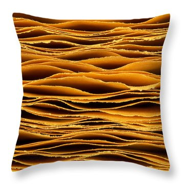 Hand Torn Paper Throw Pillow