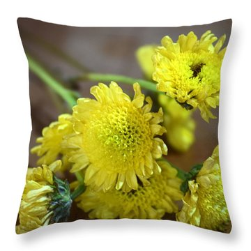 Throw Pillow featuring the photograph Handful For You by Deborah  Crew-Johnson