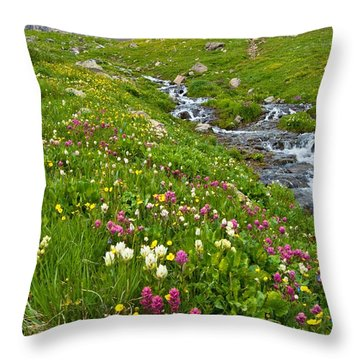 Handie's Peak And Alpine Meadow Throw Pillow