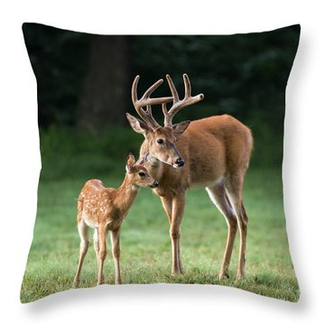 Throw Pillow featuring the photograph Hands On Dad by Andrea Silies