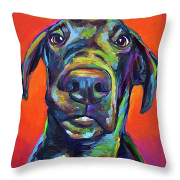 Handsome Hank Throw Pillow by Robert Phelps