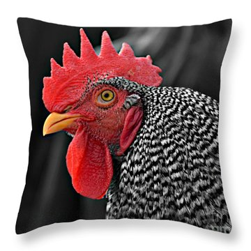 Handsome Plymouth Rock Rooster Throw Pillow