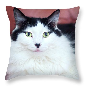 Handsome Tuxy Throw Pillow by Byron Varvarigos