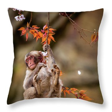 Throw Pillow featuring the photograph Hang In There, Baby Redux by Rikk Flohr