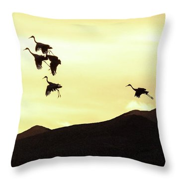 Hang Time Throw Pillow