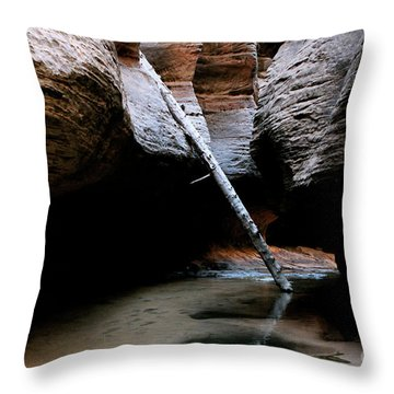 Hanging By A Moment Throw Pillow