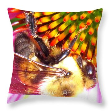 Hanging In There Throw Pillow by Ian  MacDonald