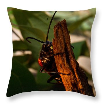 Hanging On For Life Throw Pillow