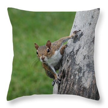 Throw Pillow featuring the photograph Hanging On by Rob Hans