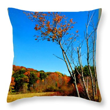 Throw Pillow featuring the photograph Hanging On To Autumn by Joan  Minchak