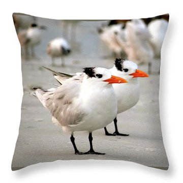 Hanging Out On The Beach Throw Pillow