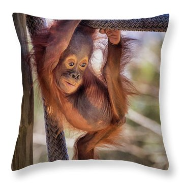 Hanging Out Throw Pillow by Stephanie Hayes