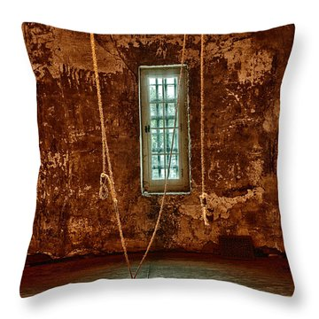 Hanging Room Throw Pillow by Patricia Schaefer