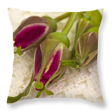 Hansa Rose Buds Throw Pillow by Sandra Foster